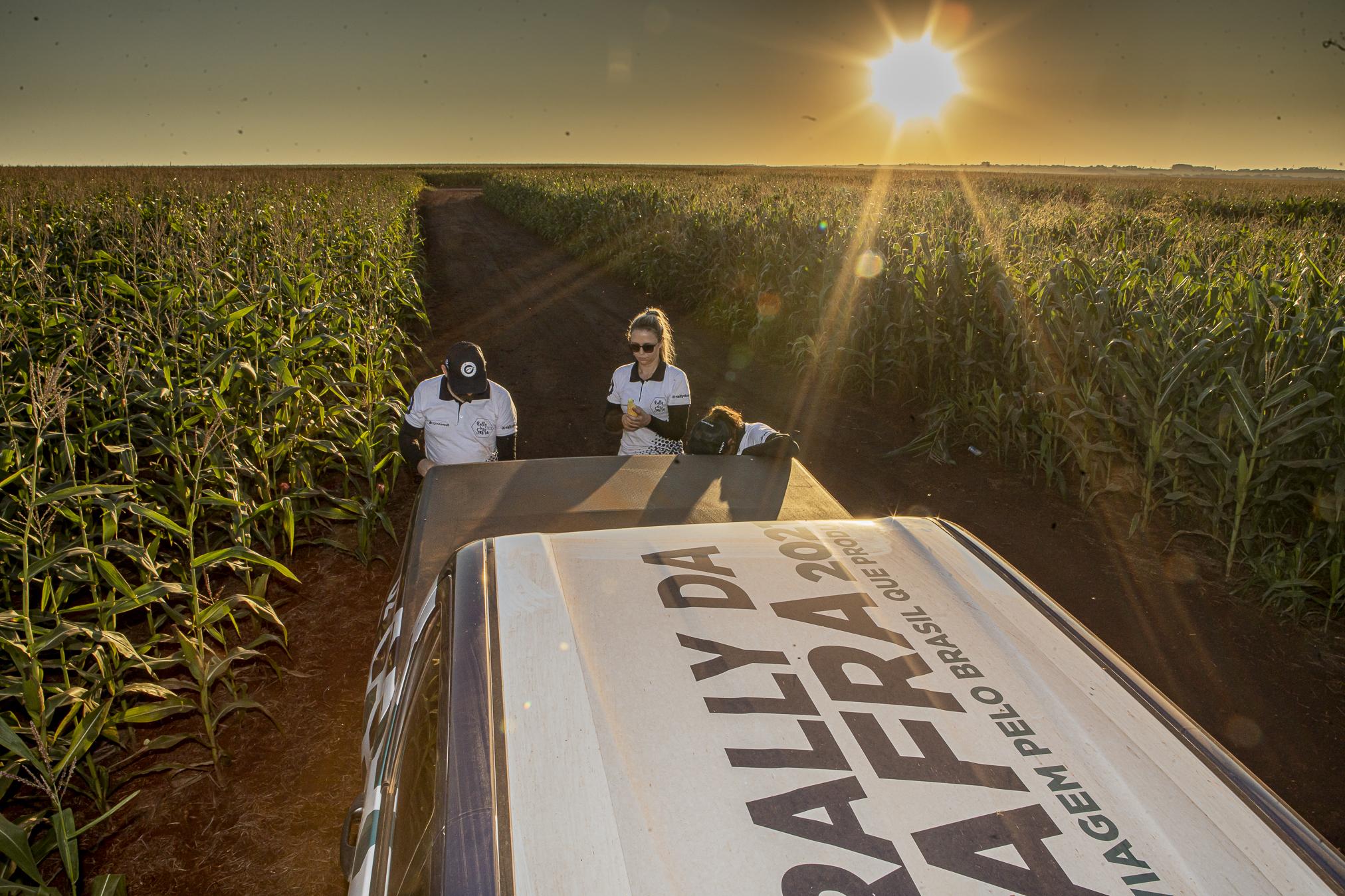rally da safra safrinha milho
